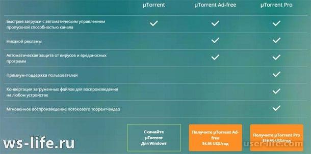 Utorrent скачать бесплатно русскую версию — бесплатные программы.