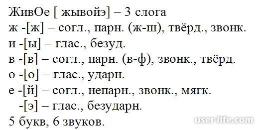 Как правильно сделать звуко буквенный разбор слова: 1 2 3 4 класс выполнить русский письменный фонетический (схема по составу пример анализ)