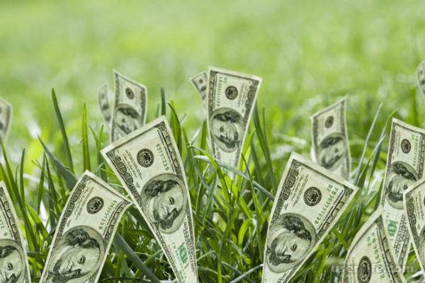 На что смотреть при выдаче кредита