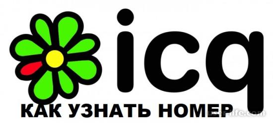 Как узнать номер ICQ (Аьски)