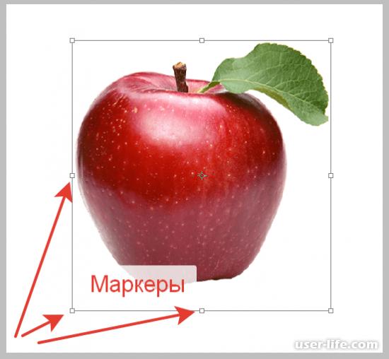 Как растянуть изображение в Photoshop