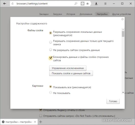 Как включить cookie в Яндекс Браузере