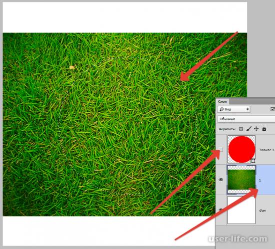 Как вырезать круг в Фотошопе из картинки