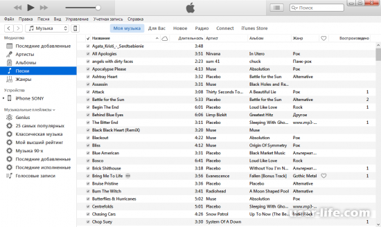 Как удалить музыку с Айфона через iTunes фото (песни рингтоны видео)