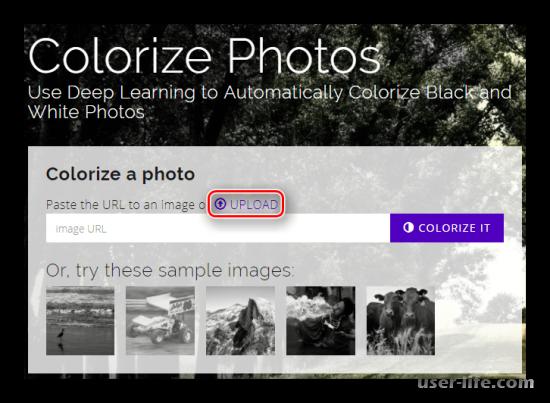 Как сделать черно-белое фото цветным онлайн и в Фотошопе