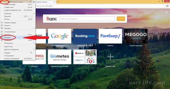 Как посмотреть историю браузера Опера (удалить очистить восстановить)