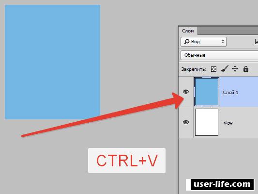 Как копировать и вставлять в Фотошопе (слой объект текст изображения)