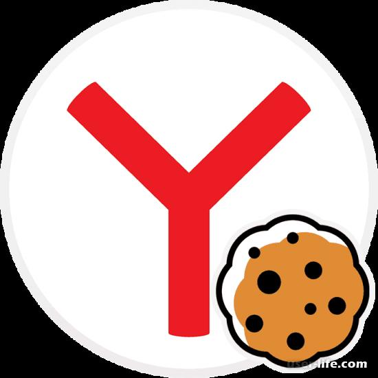 Как включить cookie в Яндекс.Браузере