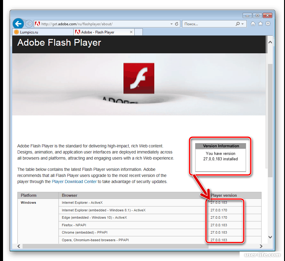 Adobe flash player не работает в tor browser hydraruzxpnew4af orfox tor browser for android вход на гидру
