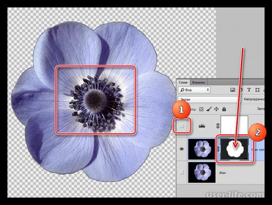 Как убрать черный фон в Фотошопе