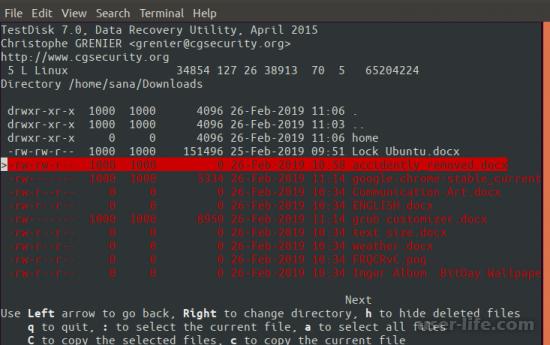 TestDisk как пользоваться скачать бесплатно русскую версию