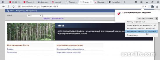 Элементы Яндекса перевод для Яндекс браузера