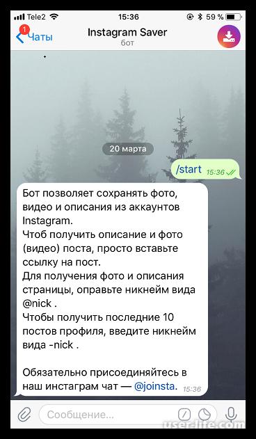 Как скопировать текст в Инстаграм