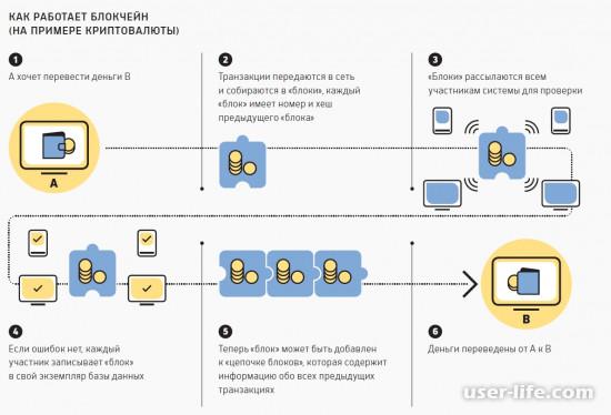 Запуск собственной криптовалюты: как сделать создать свою самому с нуля (технология инструкция руководство)