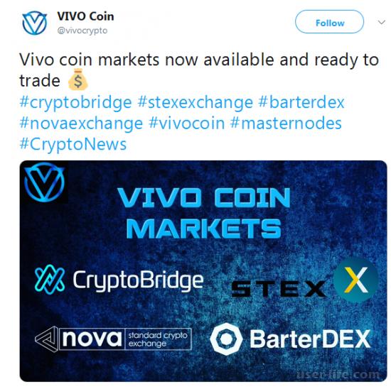 Vivo Coin криптовалюта пулы майнинга монеты