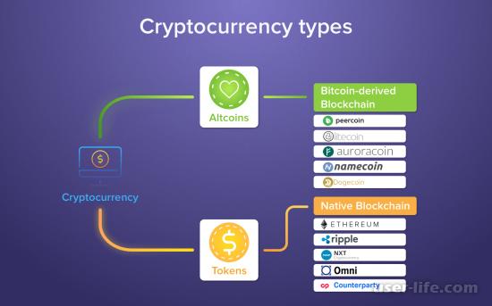 ICO криптовалют: что такое простыми словами как зарабатывать рейтинг лучших блокчейн проектов