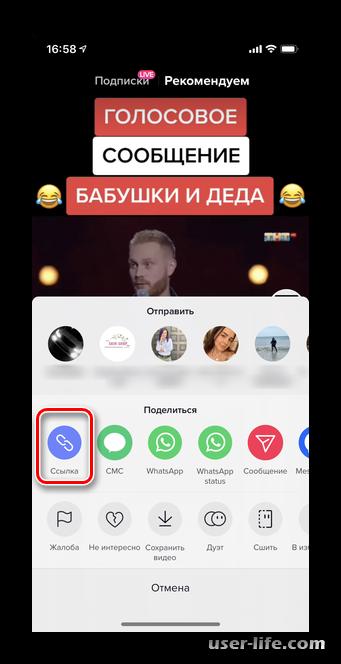 Как скачать видео из TikTok