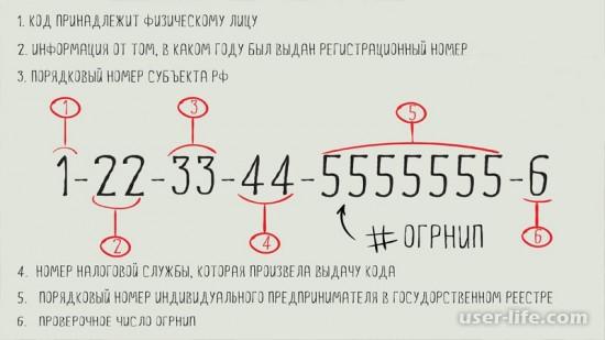 Что такое ОГРН расшифровка цифр номера проверка поиск как узнать зачем нужен