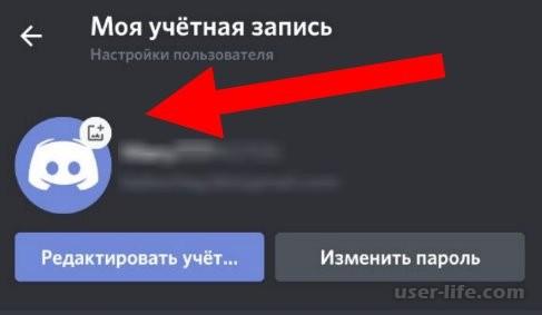 Как сделать невидимую аватарку в Discord